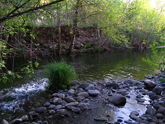 Riparian Zone (zoniedude1) Tags: light arizona southwest color nature water beauty creek outdoors evening stream peaceful tranquility flowing exploration discovery riparian westclearcreek creekside coconinonationalforest babblingbrook canonpowershota720is natureselegantshots zoniedude1 riparianecosystem