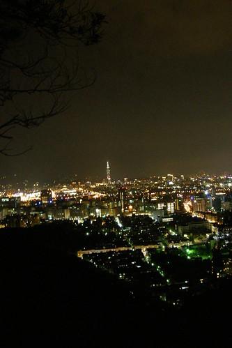 01.夜晚枝頭下的台北盆地