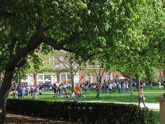 Students on the Quad, UIUC (dreamofdata) Tags: trees green students campus spring quad universityofillinois uiuc quadrangle urbanachampaign