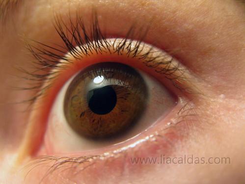 Olho / Eye