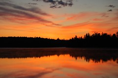 Algonquin Mist (GlossyEye.) Tags: world trip camping light vacation sun mist ontario canada reflection water colors beautiful sunrise landscape la nikon colours searchthebest getaway 55mm wilderness fa algonquinpark 200mm silhuettes goldengarden differenza  lamicizia paletes outdour nikond40  lamiciziafaladifferenza thepowerofnow
