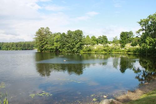 Pratt Pond and Lakeview Cemetery