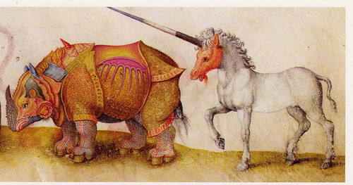 rhinoceros and unicorn