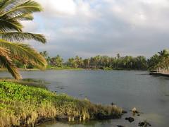 Ancient fishing ponds, A Bay, Waikoloa