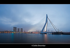 Erasmus Bridge In The Mist (DolliaSH) Tags: city longexposure bridge light people urban haven holland color water colors architecture night reflections river puente photography lights noche photo rotterdam europe foto nightshot erasmus photos nacht harbour nederland thenetherlands wideangle ponte explore most le pont brug maas brcke ultrawide nuit kopvanzuid notte stad erasmusbrug noch zuidholland brucke erasmusbridge southholland explored nachtopname canoneos50d dollia dollias sheombar