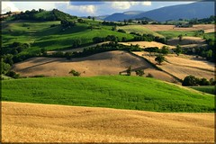 verde-oro (gigi 62) Tags: italy verde green canon landscape gold san italia severino hills campagna marche paesaggio colline italians oro macerata blueribbonwinner sanseverino abigfave platinumphoto diamondclassphotographer platinumheartaward ixus960is worldwidelandscapes flickrestrellas discoveryphotos
