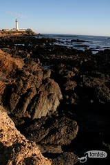 Pigeon Point  03 (Sophie Masure) Tags: california usa lighthouse pigeonpoint