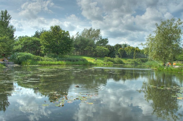 Jardin d'eau au Domaine de Maizerets