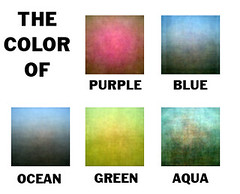 The Color Of