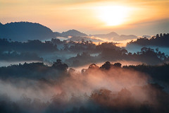 Morning mist (Sim Eng Hiang) Tags: morning mist sarawak borneo tropicalrainforerst