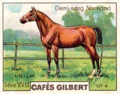 gilbert chevaux008
