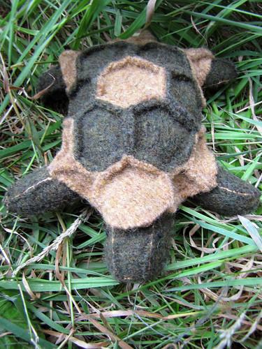 John Tortoise (3)