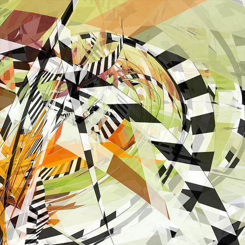 zebra.01 detail
