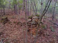Oconee Heritage Homestead Ruins 2