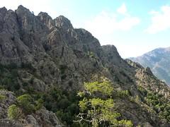 La vire exposée menant à Bocca Rustali (masquée sur la droite)