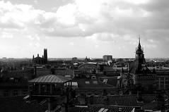 IMG_0524 (romain benquey) Tags: noiretblanc toulouse toits