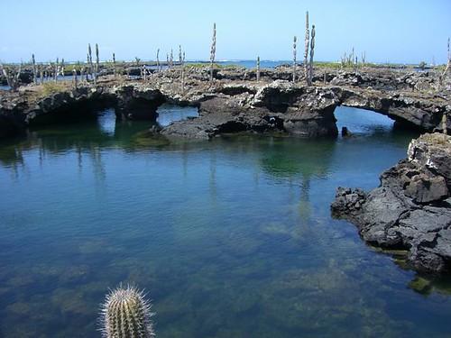 Los-Tuneles-Galapagos