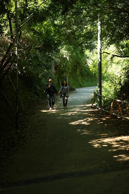 堀割の古道