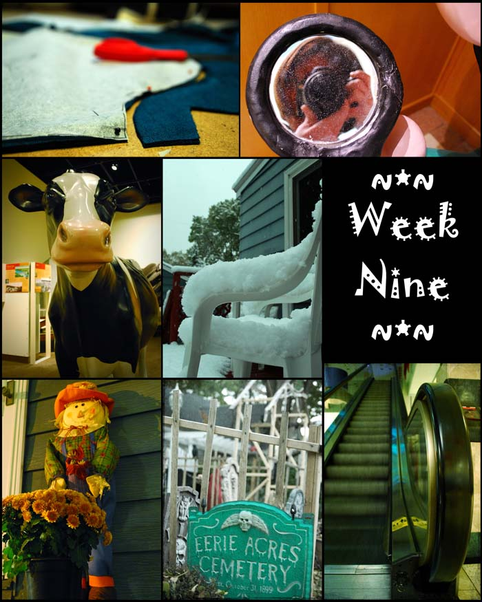 Week 09 blogsize
