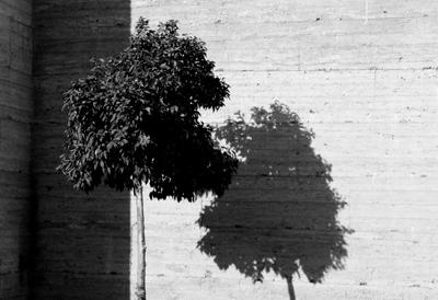 sombra_05