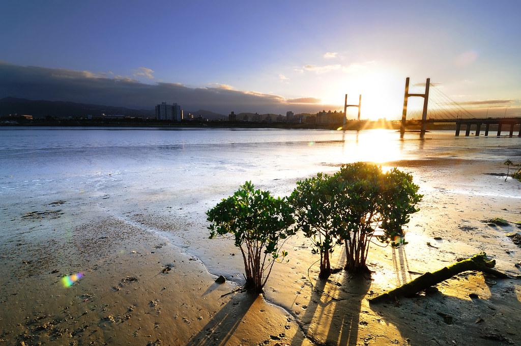 Sunrise 早安重陽 生命向陽