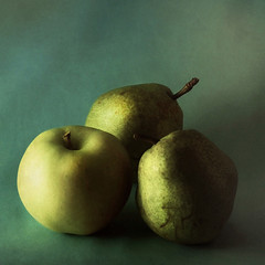 /3/ (nene-ane(ON - OFF)) Tags: stilllife textures imagepoetry thedantecircle