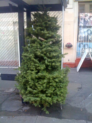 Muni Christmas tree