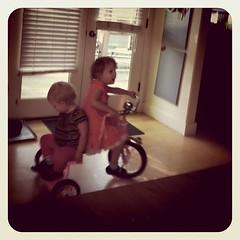 Dottie catches a ride.