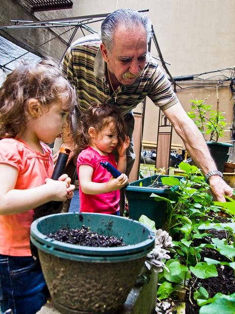 145/365 - May 25, 2011 - Gardening