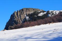 a Kakastaréj / the Rooster's Peak (debreczeniemoke) Tags: tél winter túra hiking hegy mountain kakastaréj creastacocoşului gutin erdély transilvania transylvania roosterspeak hó snow táj land tájkép landscape magaslat height csúcs top kilátás view olympusem5