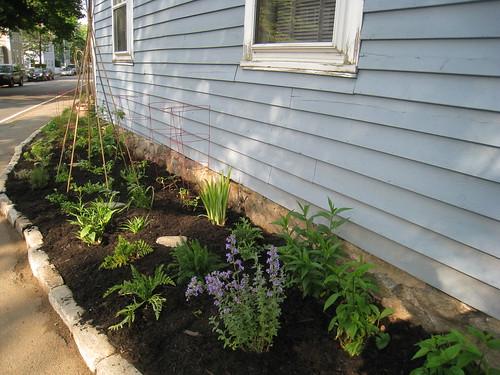 Mulch in garden and trellis up!