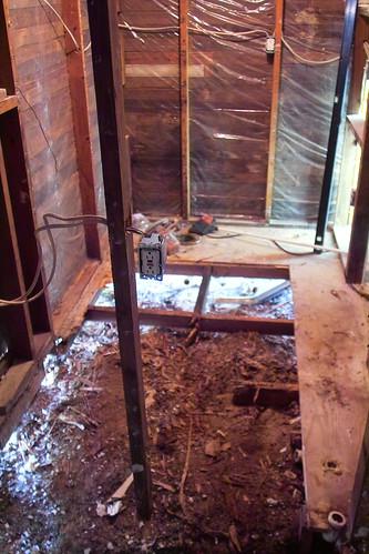 Old Termite Damage