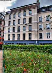 flowers (romvi) Tags: street flowers paris france nature colors les fleurs buildings garden nikon europe couleurs jardin villa rue romain dri halles pelouse immeuble herbe chatelet perpsective d90 romainvilla romvi