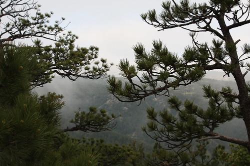 A light mist