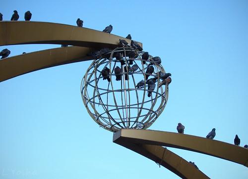 Doves of peace ©  L`Yoshka