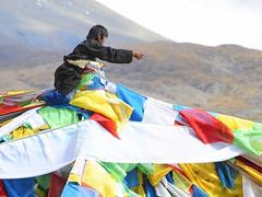 Windhorse,Tibetan is Lungta,རླུང་རྟ། (reurinkjan) Tags: tibet 2008 prayerflag dala tibetanprayerflags windhorse lungta changtang drokba tibetanlandscape དར་ལྕོག janreurink damshungcounty damgzung བོད། བོད་ལྗོངས། passla ལ། བཀྲ་ཤིས་བདེ་ལེགས། བྱང་ཐང། རླུང་རྟ་ འདམ་གཞོང་།