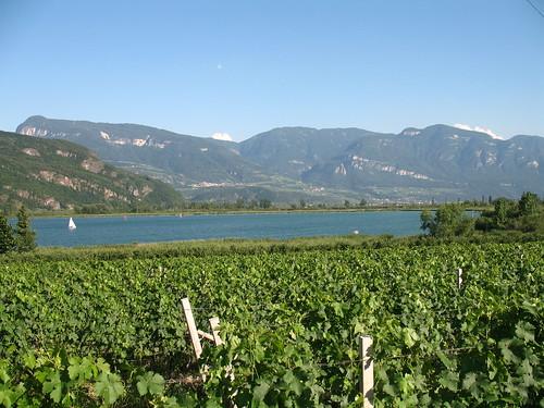 Blick auf den Kalterer See von der Weinstrasse zwischen Kaltern und Tramin