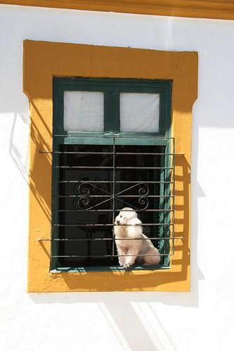 2009 juillet Olinda (34)