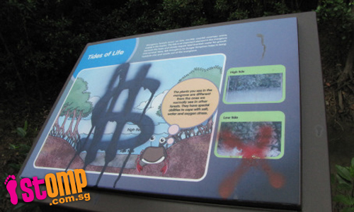 'Gangs' responsible for graffiti at Pasir Ris mangrove site