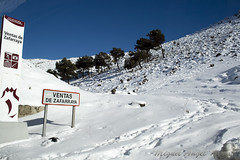 IMG_8105 (Miguel Angel Mora (GSi_PoweR)) Tags: espaa snow andaluca carretera nieve nevada sunday bosque granada costadelsol domingo maroma mlaga mountainroad meteorologa axarqua puertomontaa zafarraya sierraalmijara caosalcaiceria