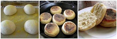 Making English Muffins