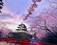 Memories of Spring. Sakura Castle Hirosaki.  Glenn Waters 3,600 visits to this photo. Thank you. Hirosaki Castle. (Glenn Waters in Japan.) Tags: bridge flowers sky castle beautiful japan clouds japanese spring nikon fort traditional kingdom aomori  sakura cherryblossoms samurai tradition hirosaki shogun moat fortress japon cherrytrees touhoku    tsugaru japanesecastle    japaneseflowers  hirosakicastle d700  nikond700  glennwaters