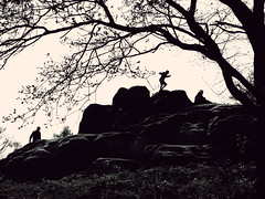 Within air (Che-burashka) Tags: park trees people tree grass silhouette sport stone standing fun jump jumping stones branches joy silhouettes hills together rest leisure recreation gettys success sx enjoylife movingup gettyskn