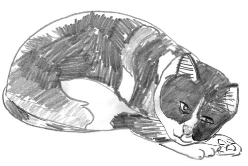 Drawing my cats, part 22