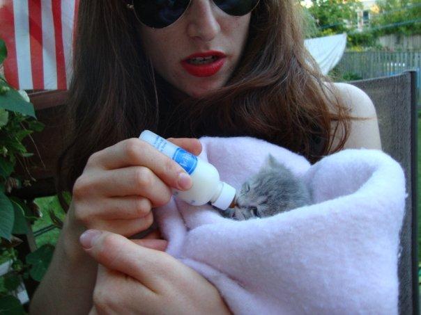 kitten tinier