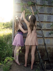 Cigarettes and lies (fleuraimee) Tags: old pink light sunset white abandoned overgrown girl beauty barn vintage rust shiny reaching farm peach rusted skater ladder