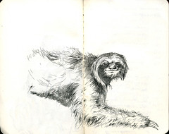 sloth! (fake glue) Tags: moleskine drawings liner strangeanimals iseeidraw