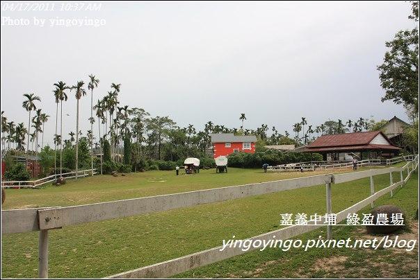 嘉義中埔_綠盈農場20110417_I6900