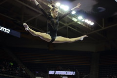 2017-02-11 UW vs ASU 75 (Susie Boyland) Tags: gymnastics uw huskies washington