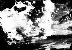 meteogrammi_004 (www.luigiredavide.com) Tags: meteogrammi ricerca materiali stampa fotografia biancoenero agentiatmosferici natura terra vento pioggia sole neve umidità rugiada nebbia polvere search materials printing photography blackandwhite weathering nature land wind rain sun snow humidity dew fog dust